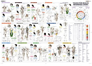 Touch-for-Health-Reference-Chart